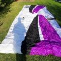For sale: Ozone viper 3
