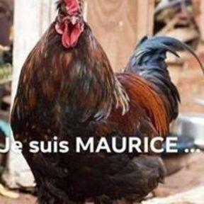Jean-Luc M